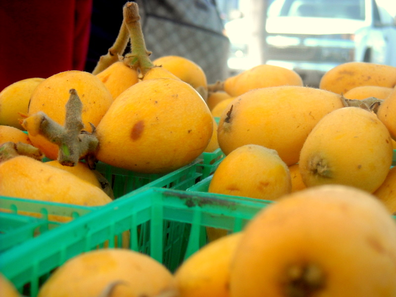 Loquats kind of look like a smoother, slightly larger  kumquat