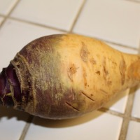 Free For All Friday: Rutabaga