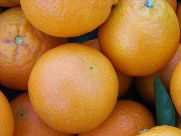 Polito Oranges